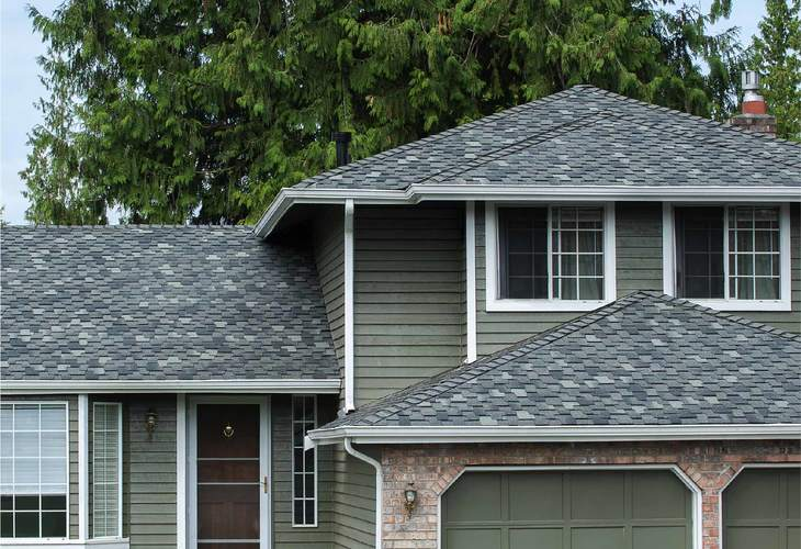 Paramount Advantage Signature Cut Roofing Shingles